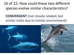 16 of 22 how could these two different species evolve similar characteristics