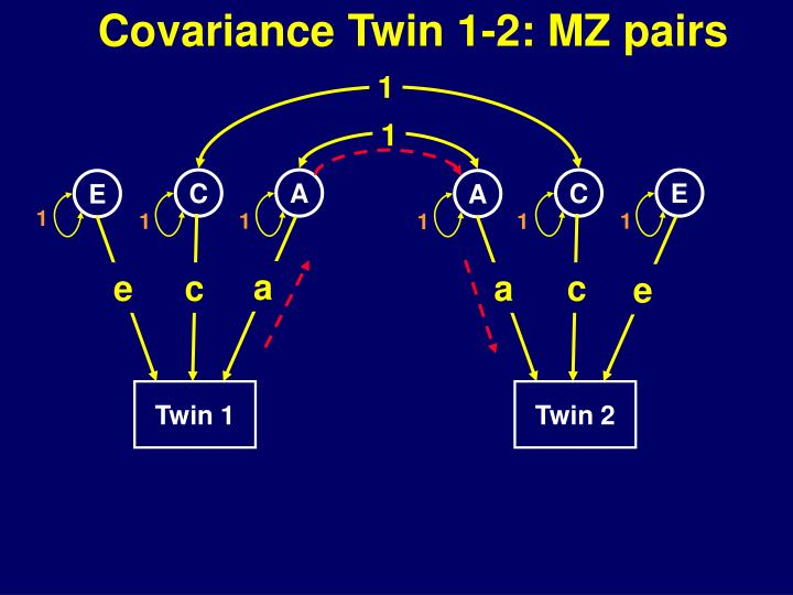 Covariance Twin 1-2: MZ pairs