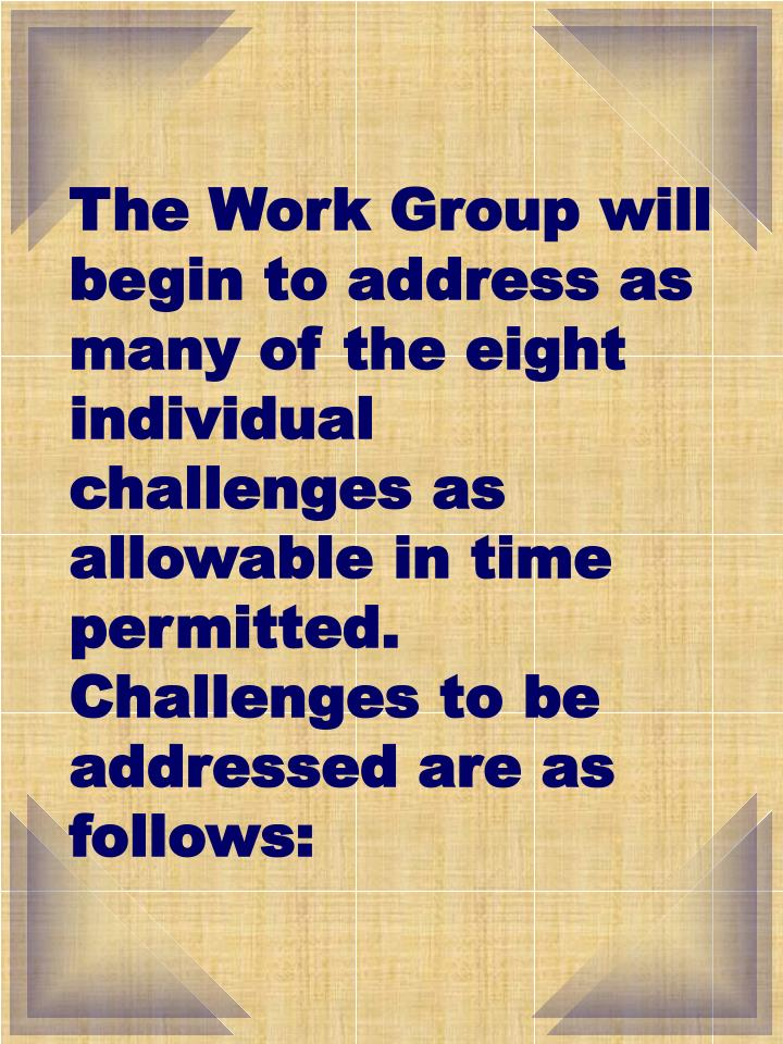 The Work Group will begin to address as many of the eight individual challenges as allowable in time permitted.  Challenges to be addressed are as follows: