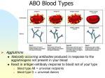 abo blood types1