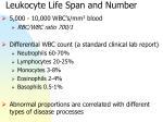 leukocyte life span and number