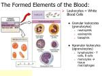 the formed elements of the blood