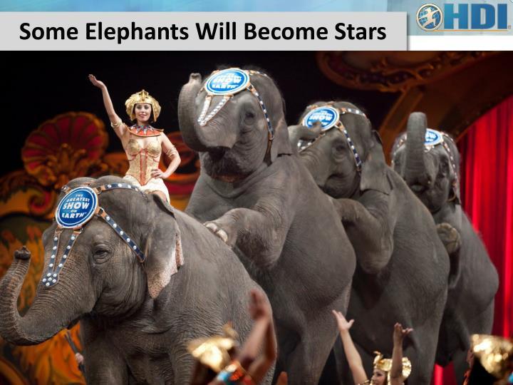 Some Elephants