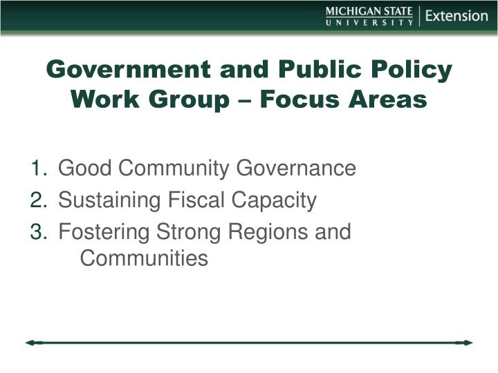 Government and Public Policy Work Group – Focus Areas