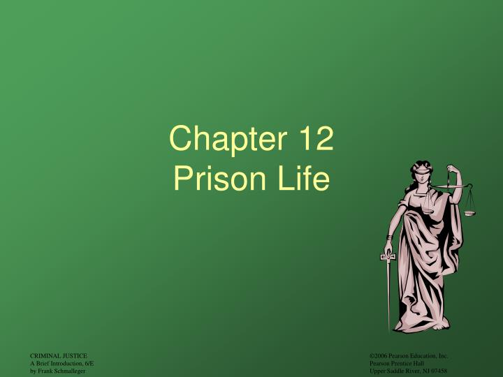 chapter 12 prison life n.