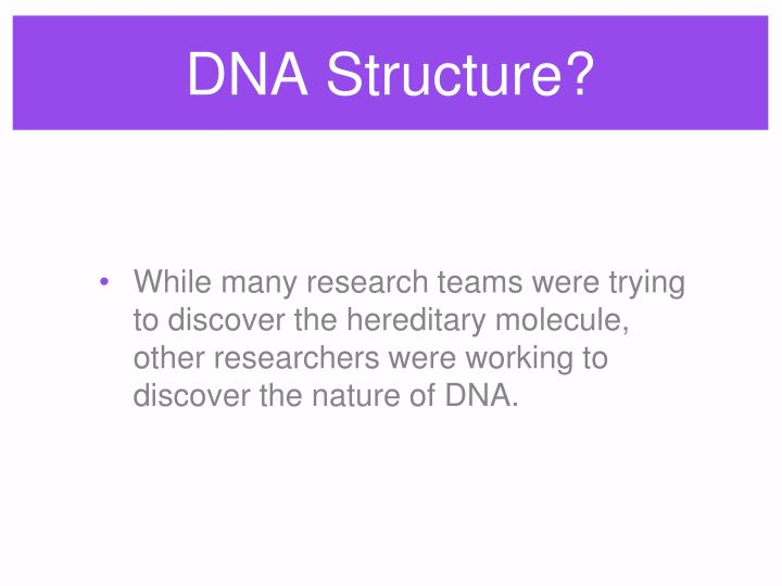 DNA Structure?