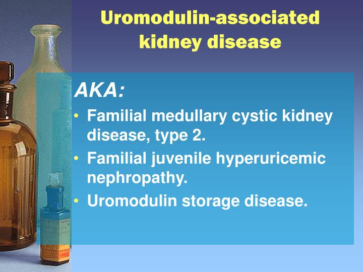 Uromodulin-associated kidney disease