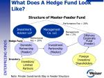 what does a hedge fund look like3