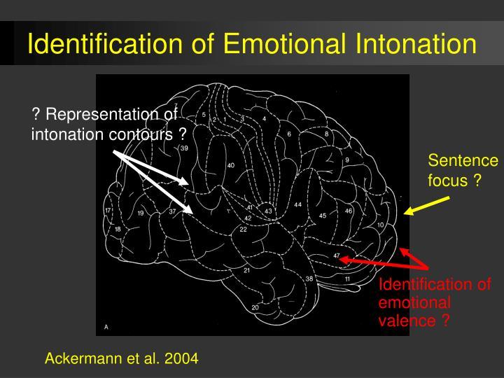 Identification of Emotional Intonation