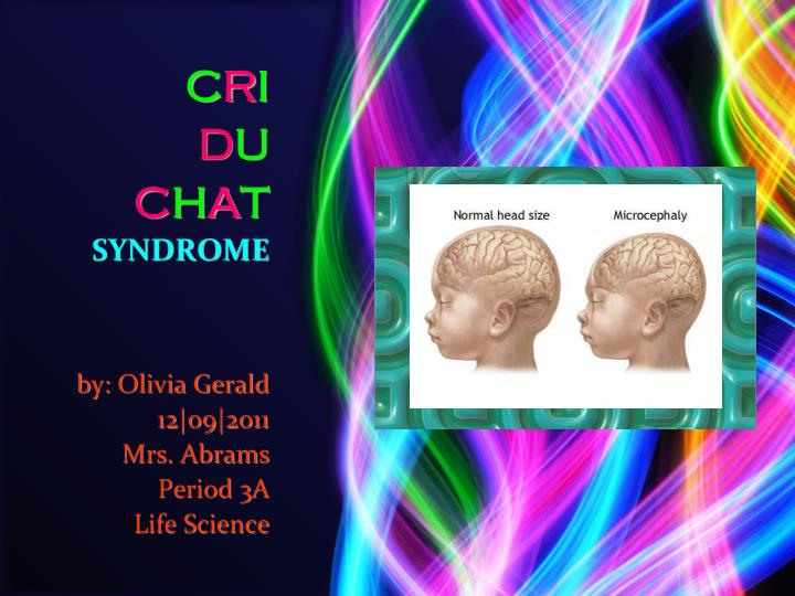 C r i d u c h a t syndrome by olivia gerald 12 o9 2011 mrs abrams period 3a life science