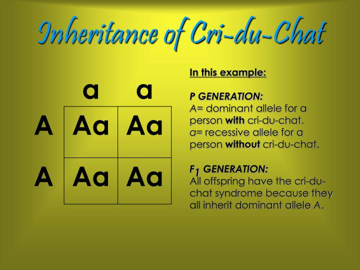 Inheritance of Cri-du-Chat