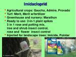 imidacloprid1