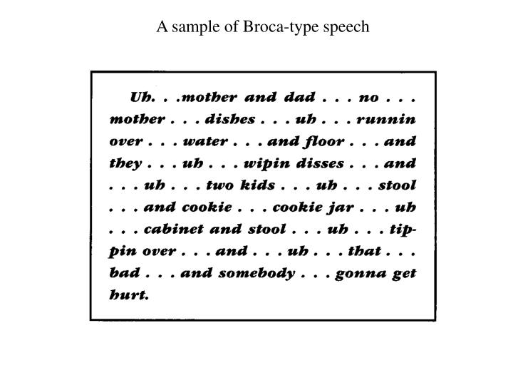 A sample of Broca-type speech