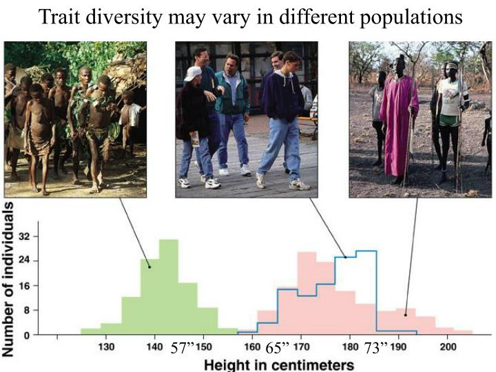 Trait diversity may vary in different populations