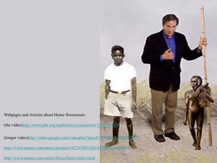 Webpages and Articles about Homo floresiensis
