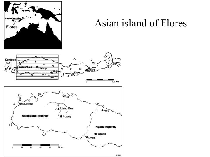 Asian island of Flores