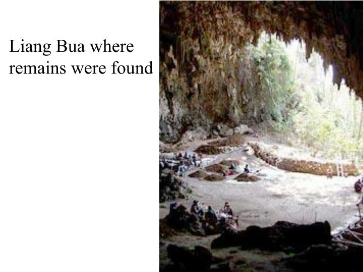 Liang Bua where remains were found