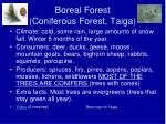 boreal forest coniferous forest taiga