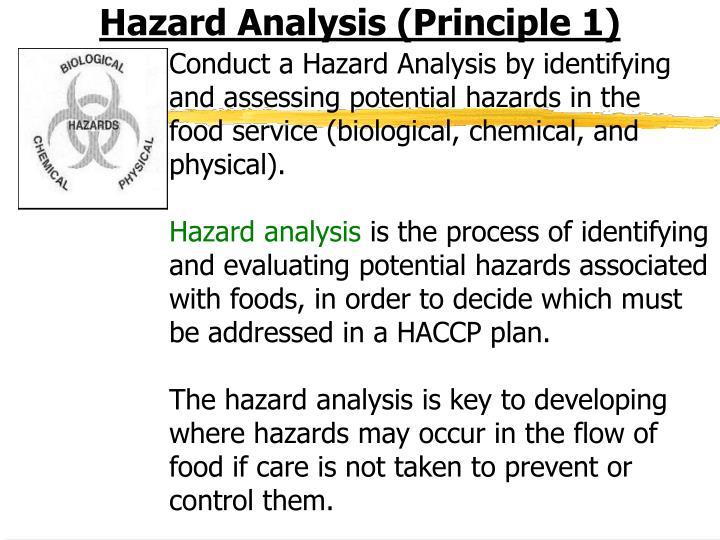 Hazard Analysis (Principle 1)