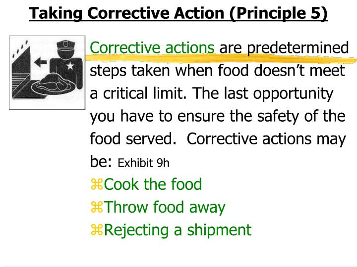 Taking Corrective Action (Principle 5)