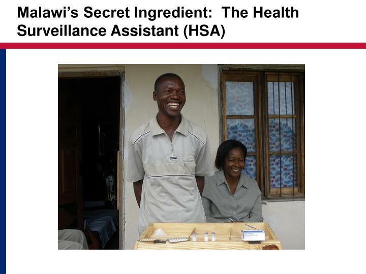 Malawi's Secret Ingredient:  The Health Surveillance Assistant (HSA)