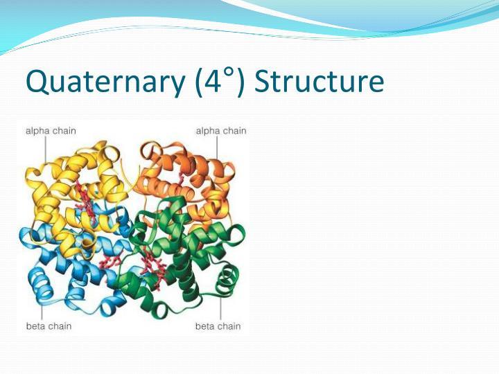 Quaternary (4