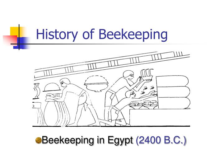 History of beekeeping1