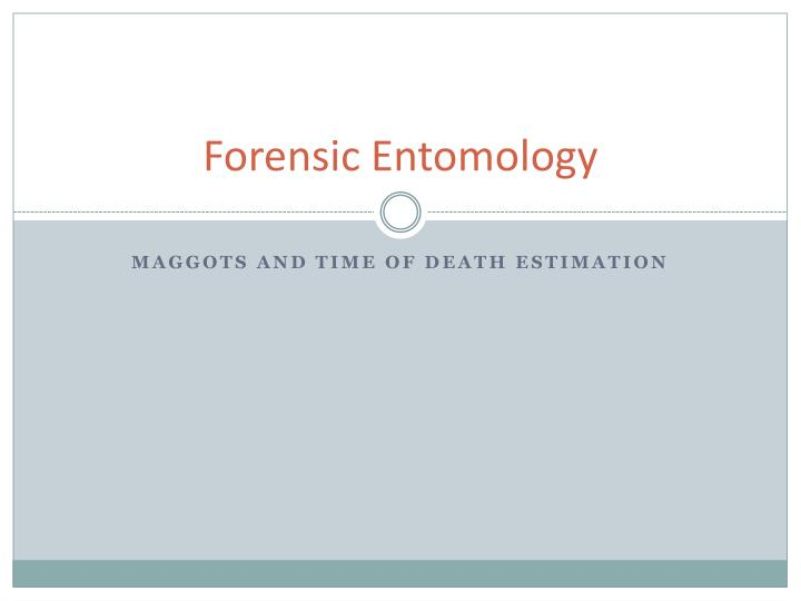Ppt Forensic Entomology Powerpoint Presentation Free Download Id 6678521