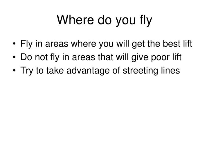 Where do you fly