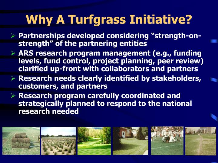 Why A Turfgrass Initiative?