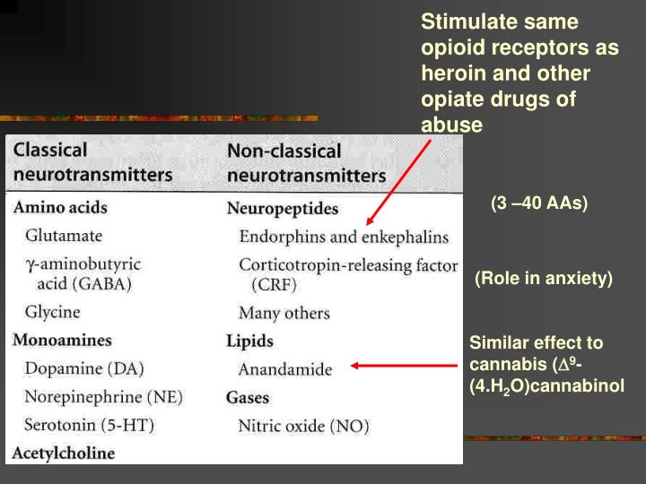 Stimulate same opioid receptors as heroin and other opiate drugs of abuse
