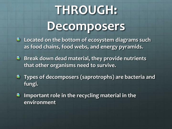 THROUGH: Decomposers