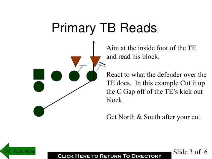 Primary TB Reads