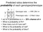 predicted ratios determine the probability of each genotype phenotype