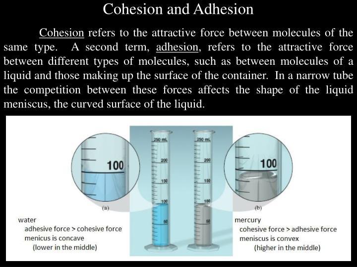 Cohesion and Adhesion