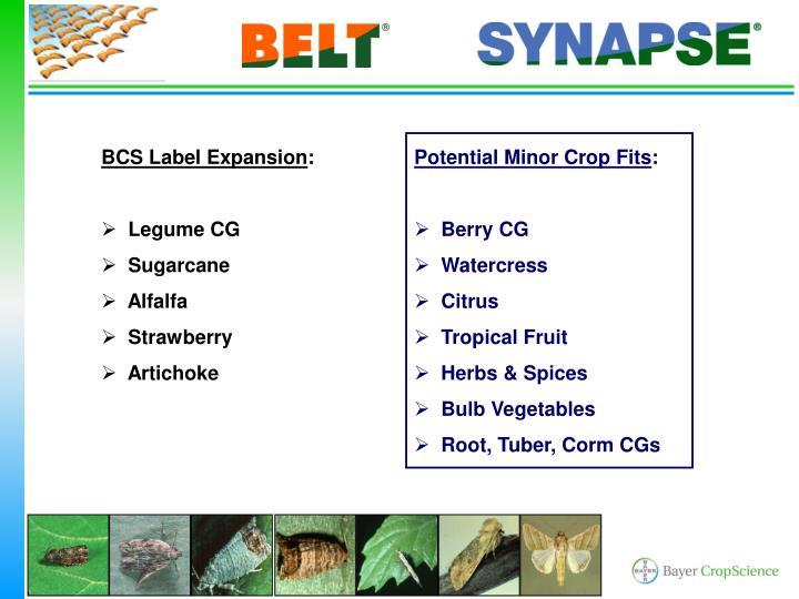 BCS Label Expansion