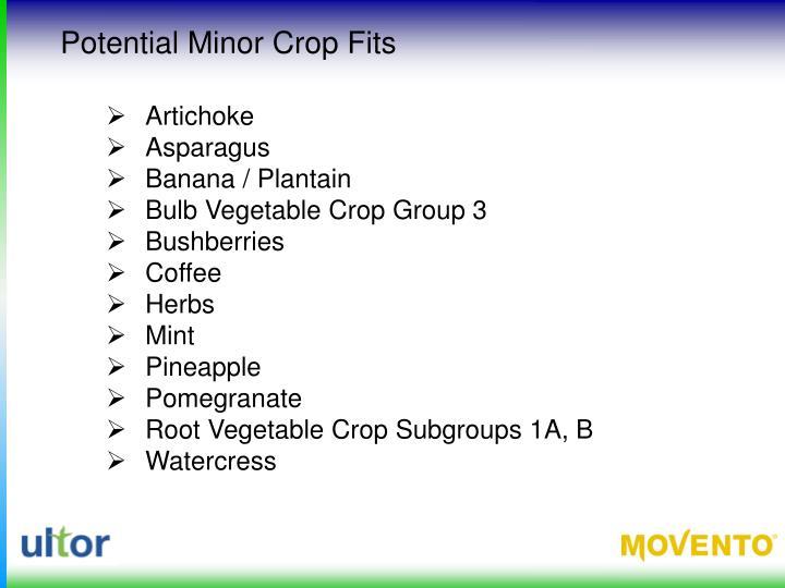 Potential Minor Crop Fits