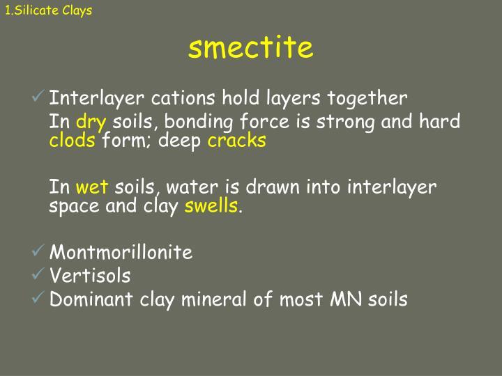 1.Silicate Clays