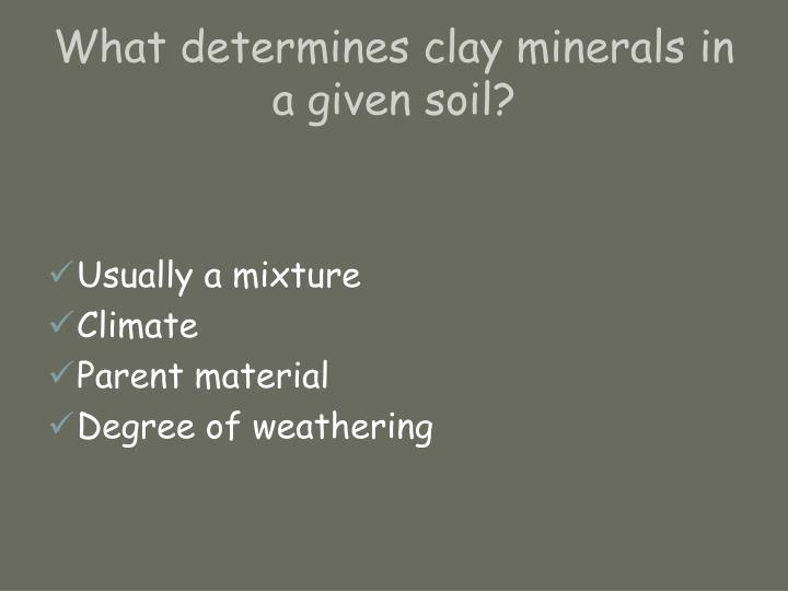 What determines clay minerals in a given soil?