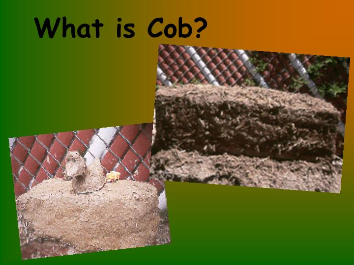 What is cob