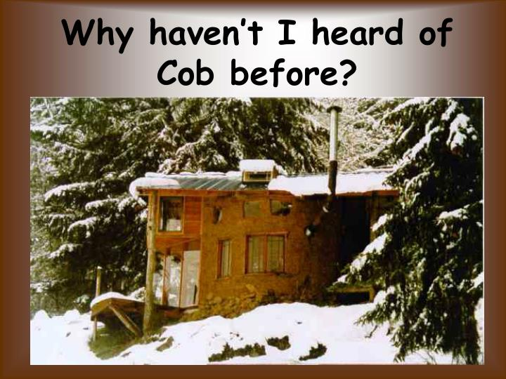 Why haven't I heard of Cob before?