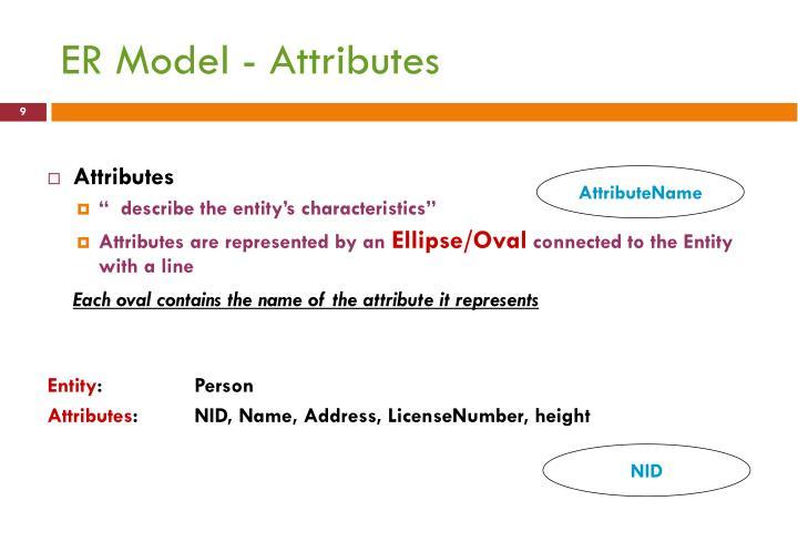 ER Model - Attributes