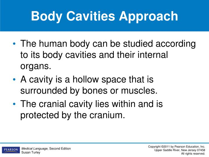 Body Cavities Approach