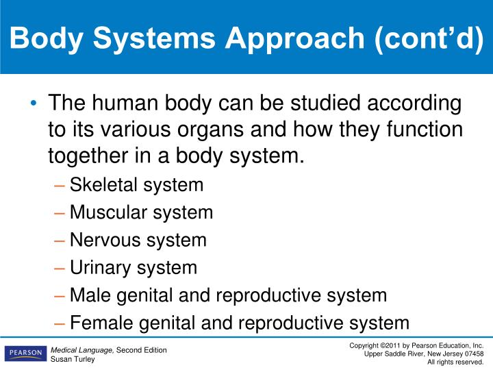 Body Systems Approach (cont'd)