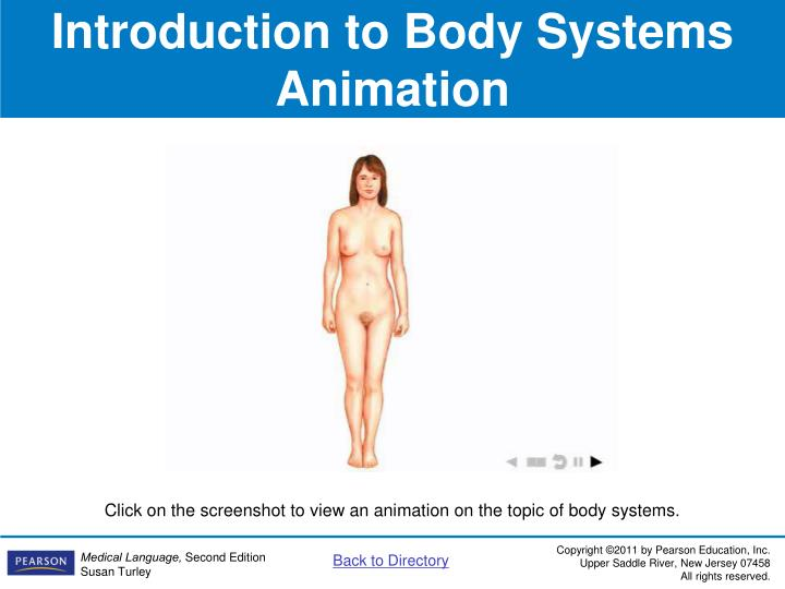 Introduction to Body Systems Animation