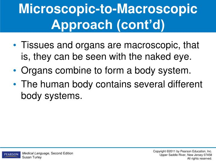 Microscopic-to-Macroscopic Approach (cont'd)