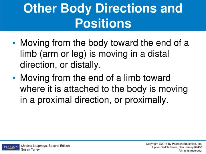 Other Body Directions and Positions