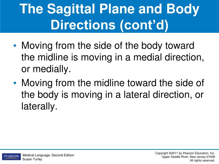 The Sagittal Plane and Body Directions (cont'd)