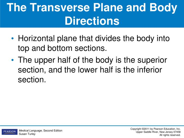 The Transverse Plane and Body Directions