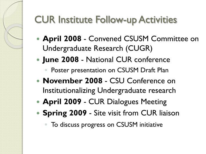 CUR Institute Follow-up Activities